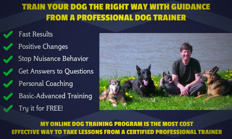 Online Dog Training - Member Benefits